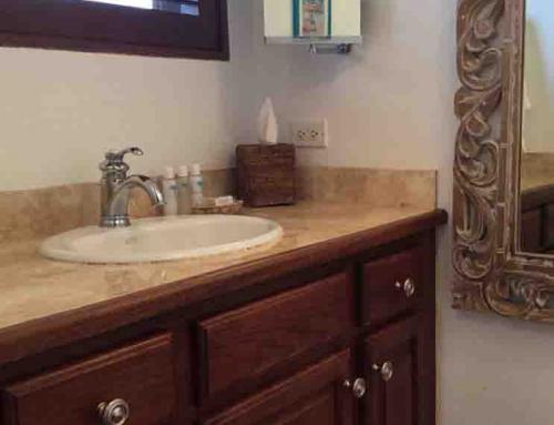 Beach Palm Guest Bathroom Sink