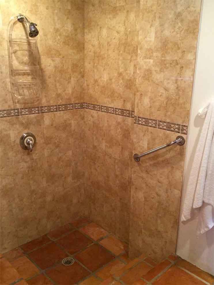 Beach Palm Guest Shower