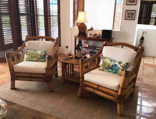 Coconut Living Room Chairs