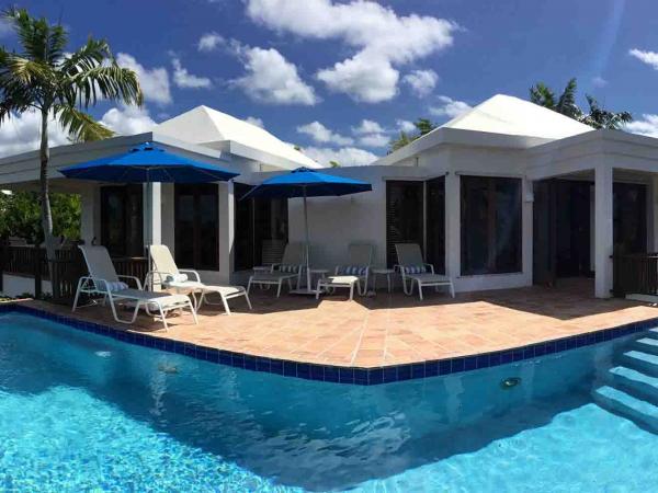 Coconut Palm Pool Closeup