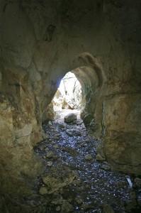 Anguilla caves