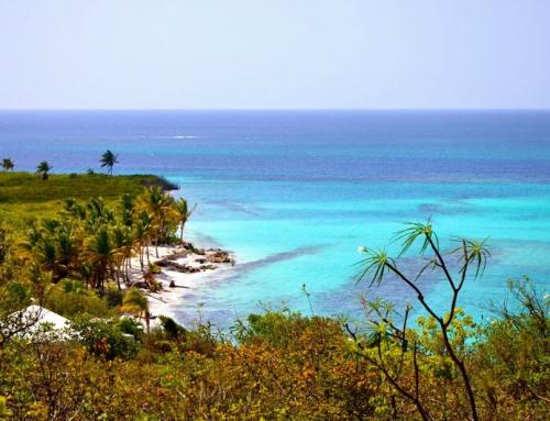 Anguilla – Photo Credit: Tracey Gonzalez