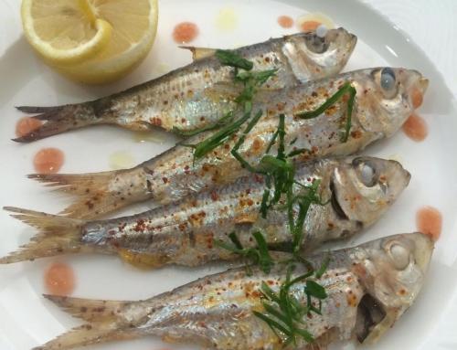 Anguilla Fish