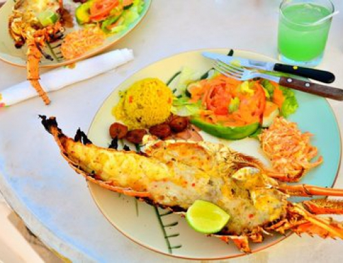 Anguilla Lobster – Photo Credit: Tracey Gonzalez