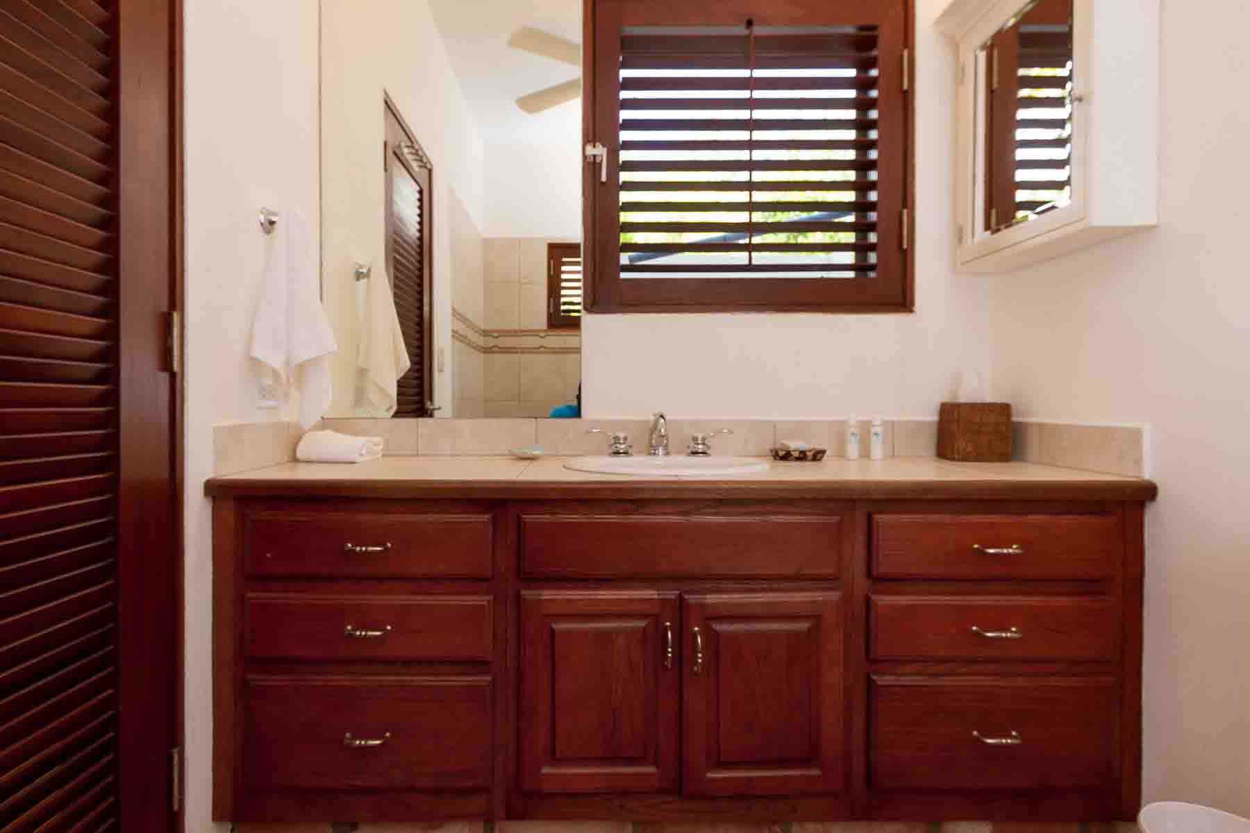 Coconut Palm Garden Master Bathroom Vanity