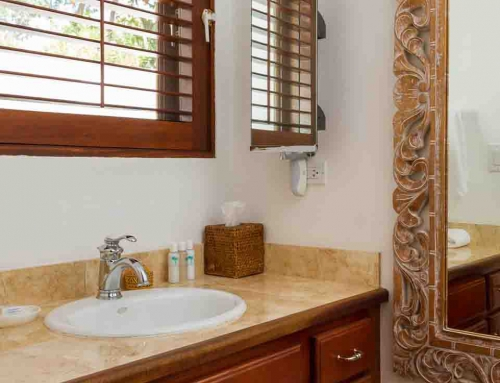 Coconut Palm Villa Guest Bathroom