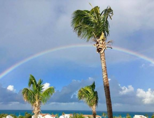 View From Twin Palms Villas With Rainbow Over Meads Bay